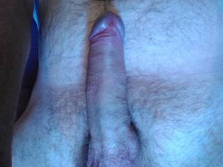 Morning blues till zoig came to the rescue.... How can you help? Rub your Juicy lips up and down it till it fully awakes