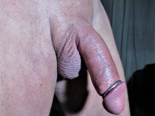 ring on cock, smooth.