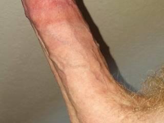 Hard, stiff, cock , ready to cum,