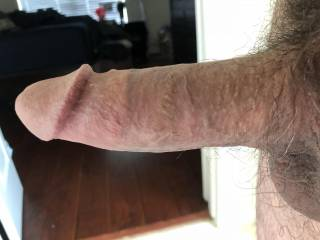 This cock....in my mouth....in my pussy....and in my ass....Lets see if your comments make him even harder....