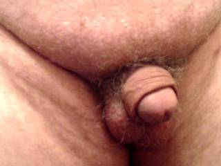 My tiny penis for your humiliating comments...
