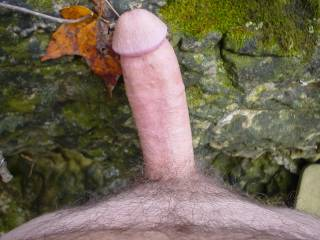 mmm hot cock 4 suck and have fun