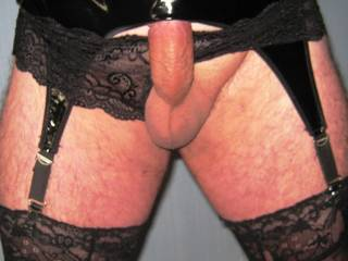 Showing off in my new PVC suspender belt and black lace panties.  Seem to have trapped my cock head in my suspender belt. Would anyone like to help me set my cock free?.