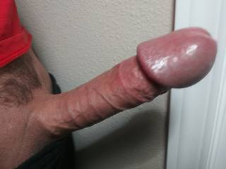 A recent pic of my Dick with the camera's flash OFF. Look OK?