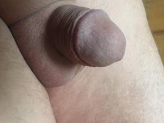Freshly shaved and butt pluged