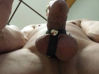 Love! I'd love to kneel in front of you and suck your dick and balls in this restraint.