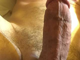 Beautiful....hot looking cock...I wonder.....would you like to see my lips around your cock, pulling that cock ring off of your cock with just my lips and teeth.  I'd need to swallow your entire cock to do it....mmmmm, would that get your cock to pulsate?  MILF K