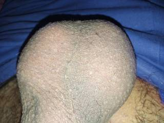 Shaved!