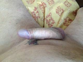 I was getting very horny now and as my cock got harder my helmet pushed through my foreskin - which do you like best  with my foreskin over my helmet or my helmet exposed ?