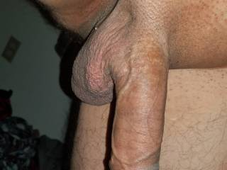 Looking for some pussy