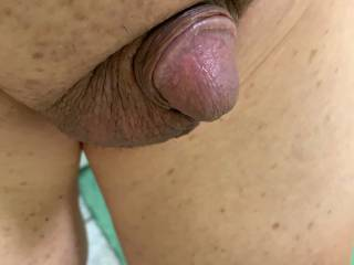 Small Asian cock drips precum