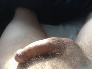My mouth would love to feel you grow hard....then give me your warm creamy load!