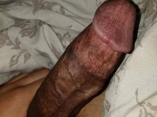 horny veiny dick looking for a nut