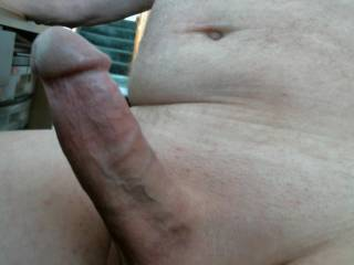 Morning wood this mornnig