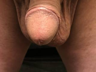 Mrs. H.C. likes this picture of my dick.  What do you think of it?