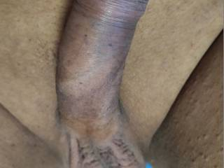 its 9''Inches healthy hand some cock for U