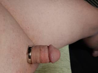 What do you think of my new cock ring?