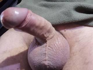 My cock  after cum
