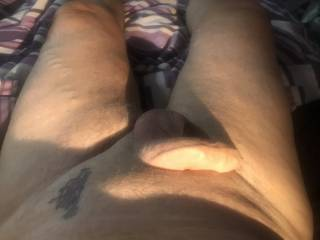 Anyone want to make my cock stiff for me ?