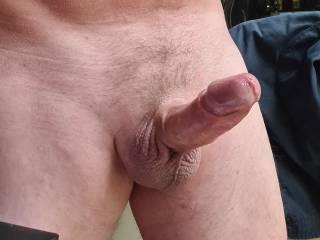 my hard dick