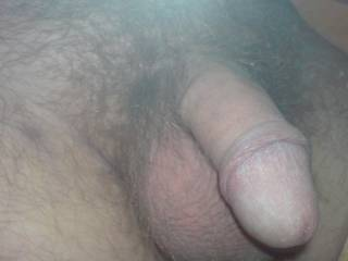 great a nice cock like mine, a little small and short says my last girl friend.