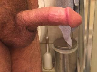 My normal morning hard cock. Who wants to back up on to it?