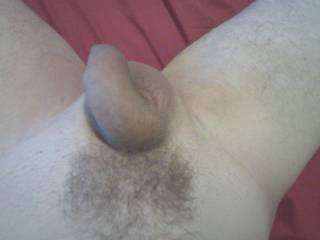 Sexy hair!!! I'll put your cock & balls in my mouth & suck you till you cum, I'll swallow all your cum.