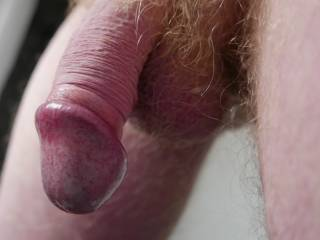 More mature flaccid cock boys and girls