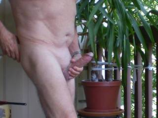Luv to suck it for you...such a nice hard cock should be shared...