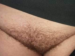 One of my exes hairy pussy. My cock would get so hard for her bush.
