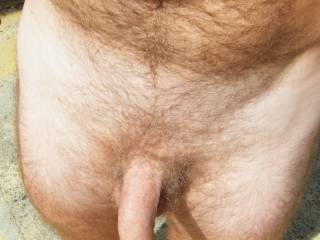 looking to play,decorate big busty, chubby, mature women..........