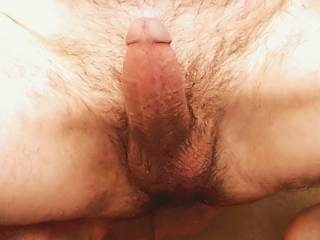 My cock picture taken outdoors!
