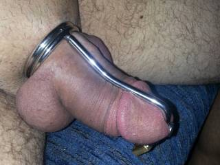 Trying to get hard, but can\'t!  Locked down tight in my cock control ring.  My balls are so swollen and the inside of my cock is so sensitive with the sound locked in there.