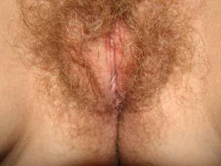 hello ...you have a very excited pussy ,i like me many i wish put my finger in your hole pussy and lick your clit...do you like my cock??