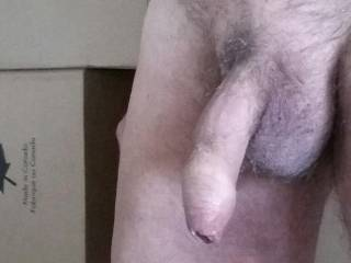 Close-up of my cock as I unpack boxes. Tough to keep my mind on the task at hand, when my hand wants to stroke mycock.