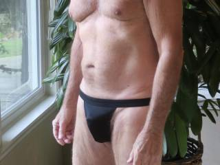 Do you think if I reach inside Mr. F\'s jockstrap, I can get him hard?  From Mrs. Floridaman