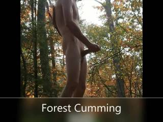 My first nude hiking in forest ending with cumming. good thrill. Do you have a suggestion for my next video ?
