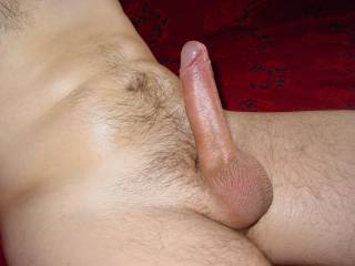 my shiny shaved dick 02