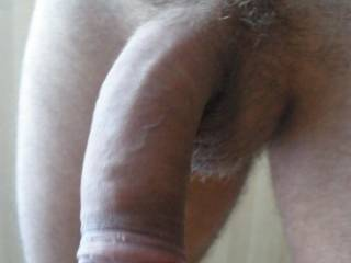 my cock...want you?