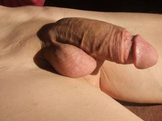 Very Nice shaved cock and balls ! ! ! LUV to see more ! !