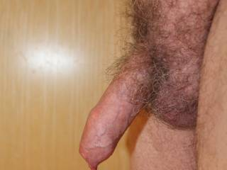 All totally natural manhood:  uncut hair, uncut penis.  Just beautiful, thanks for sharing. From Mrs. Floridaman