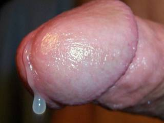 A little drop of precum for you to taste