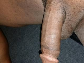 Any horny ladies want to get this hard for me?
