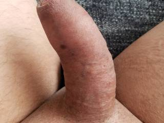 Looking Zoig porn getting turned on