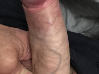 My cock stiff after a message from Zoig friend Sue