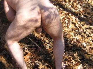 public woods naked showing ass