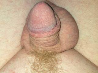 small ginger dick and balls close up