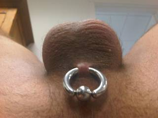 Mmmm, I want to suck your smooth balls while I tongue your ass!