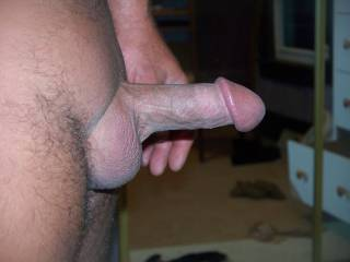 mmm perfect cock, hard and thick. I would love to play with those big balls mm