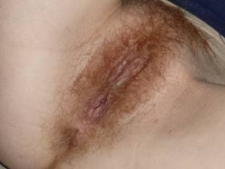 Candy\'s hairy ginger pussy, just begging to be licked, fingered, and fucked